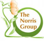 The Norris Group & Webistree