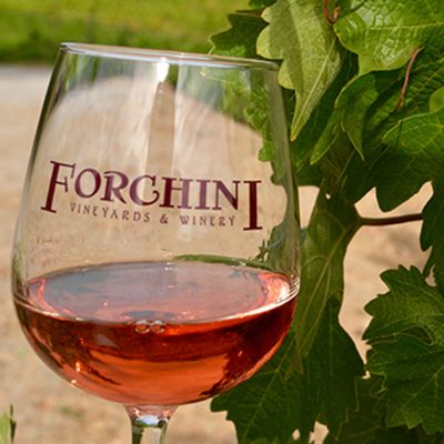 Forchini Vineyards
